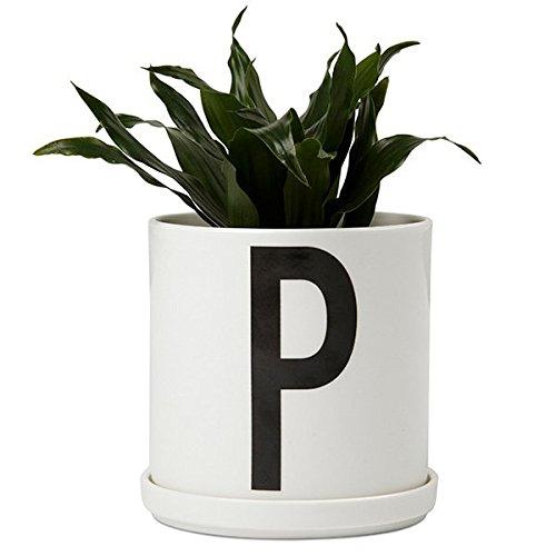 AJ Plant Pot;