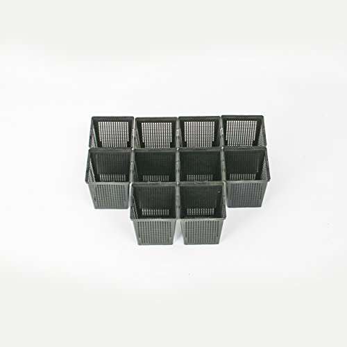 Inter Flowers – 10 cestas de Plantación – Cuadrado – 11 x 11 x 12 cm – Plantación de Jardín/Estanque para Plantas de Agua – Permiten un Flujo de Agua maxiumum