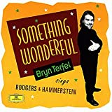 Produkt-Bild: Something Wonderful (Terfel Sings Rodgers And Hammerstein)