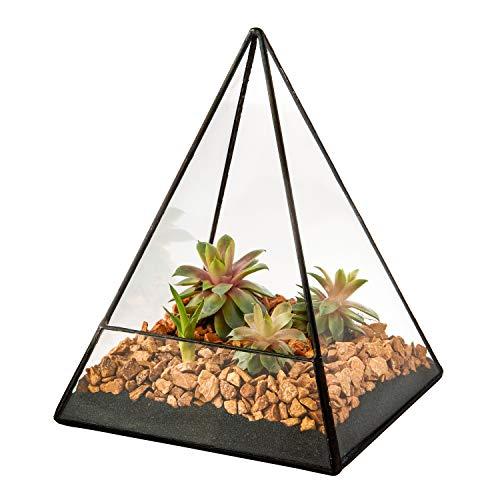 Ultra 14x14x19 Triangular Clear Glass Terrarium Planter Geometrische Form Perfekt für das Display Hochzeitstücher Einzigartiges Zentreff oder Fensterbänke für Luftanlagen Fern Moss Small Succulents Indoor Modern Garden