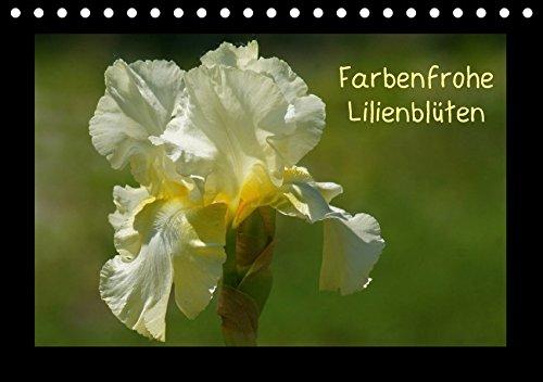 OBI OBI Sumpfschwertlilie