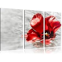 piccolo fiore di papavero in acquain 3 pezzi immagine Foresta tela 120x80 su tela, Immagini XXL completamente incorniciato con grandi cornici di cuneo, stampe d