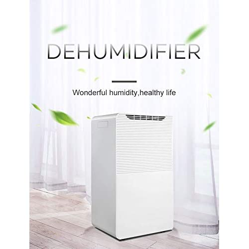 41VIoFiP4UL. SS500  - COUNTRAGE Smart Air Dehumidifier with LED Display,Air Ionizer Remove Dust, with Child Lock,Swing Function,Washable air Filter,for Damp, Mould,Condensation,White