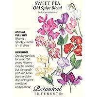 PlenTree Old Spice Blend semillas de guisantes dulces - 3 gramos - Lathyrus