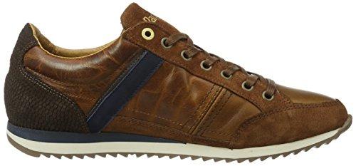 Pantofola d'Oro Matera Uomo Low, chaussons d'intérieur homme Marron écaille de tortue
