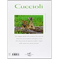 Cuccioli-Ediz-illustrata