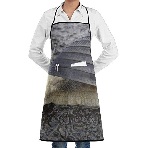 Adult Funny Einfach Kostüm - Funny Snail City Office Building Schürze Lace Adult Mens Womens Chef Adjustable Polyester Long Full Black Cooking Kitchen Schürzes Bib With Pockets For Restaurant Baking Crafting Gardening BBQ Grill