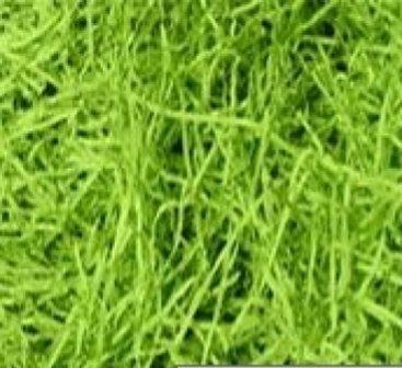 Shredded Paper Hamper Filling - Green - 1kg