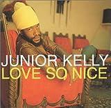 Songtexte von Junior Kelly - Love So Nice