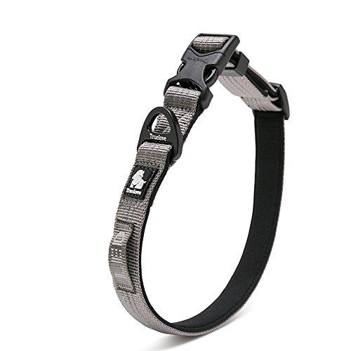 Louvra Hundehalsband aus Premium-Nylon, für große, mittlere & kleine Hunde (4 Farben & 3 Größen) (Licht Oxford Grau)