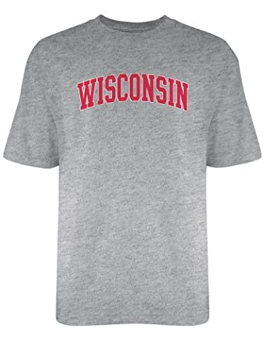 NCAA Wisconsin Badgers Licensed T-Shirt, Large, Dark Ash by Authentic Sports