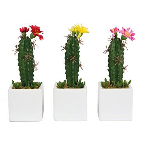 Articolo decorativo pianta artificiale Cactus in vaso-colori assortiti-colore secondo disponibilità-prezzo per pezzo.