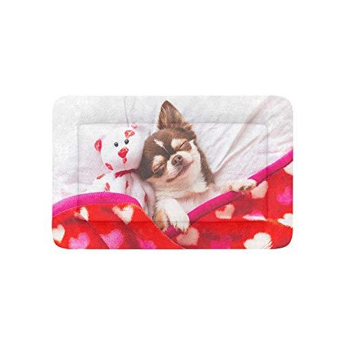 Individuelle Möbel Sofa (Yushg Nette Chihuahua Hund Tier Extra Große Individuell Bedruckte Bettwäsche Weiche Hundebett Couch Für Welpen Und Katzen Möbel Matte Höhlenauflage Kissenbezug Innen 36x23 Zoll)