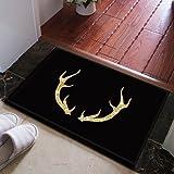 HL-PYL @Carpet-North European einfache Eingangstür Teppich wc Wasser Aufsaugvlies in die Fußmatte, 40cmx60cm, J 169-01,