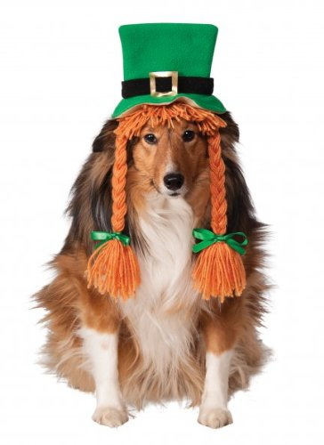 Rubies Costume Company St. Patty 's Day Girl Pet Kostüm Hat mit Zöpfe (St Patty Day Kostüm)