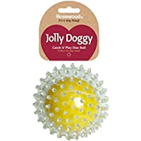 Rosewood Jolly Doggy Catch and Play Tennis Ball for Dogs