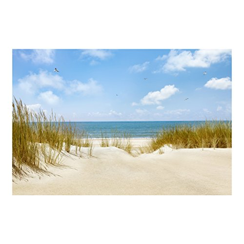 Hervorragend Apalis Fototapete Strand an der Nordsee Vliestapete Breit | Vlies  HW32