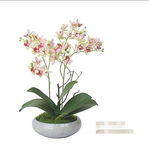 WRXXHZHR Phalaenopsis Künstliche Blume Chinesischen Stil Wohnzimmer Wohnkultur Vergossen Set Rosa 25X25X40Cm