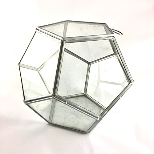 cristal-del-terrario-de-forma-hexagonal