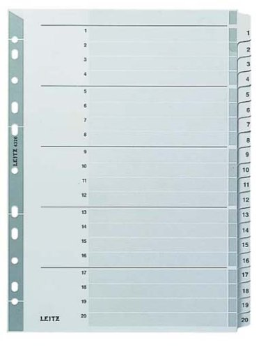 Leitz 43260000 Kartonregister 1-20, A4, Karton, 20 Blatt, grau