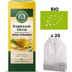 Tisane Ortie Citronnée Bio Urtica Dioica Originale 20 Sachets x 1,5g 'Production Certifiée' | Tisane Ortie Séchée Certifiée Bio Qualité Supérieure - Sans Traces Pesticides OGM - Ortie Piquante Bio