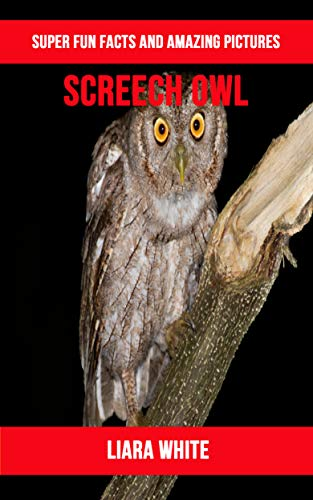 Libro PDF Gratis Screech owl: Super Fun Facts And Amazing Pictures