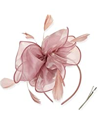 DRESHOW Fascinators Hat Cocktail Tea Party Headwear Flower Mesh Organza Ribbons Feathers on a Headband and a Forked Clip for Girls and Women