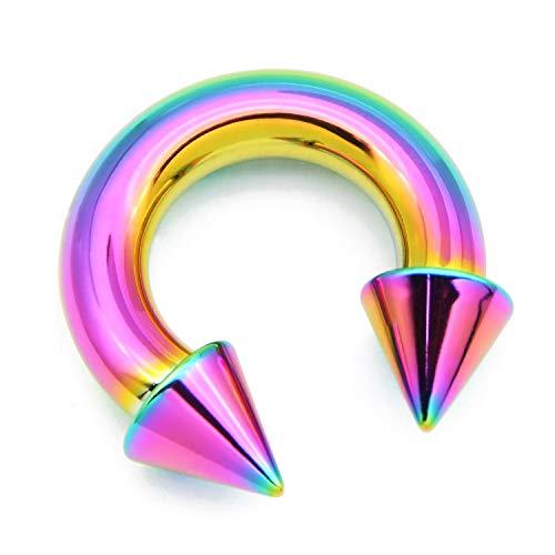 Briana Williams Regenbogen Großes Hufeisen Circular Barbell Ring 316L Chirurgenstahl CBR Piercing Schmuck(2/2.5/3/4/5/6/mm Dicke)