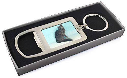 Silver Grey Javanese Katze Chrom-Metall- Flaschenöffner Schlüsselring Strumpffül -