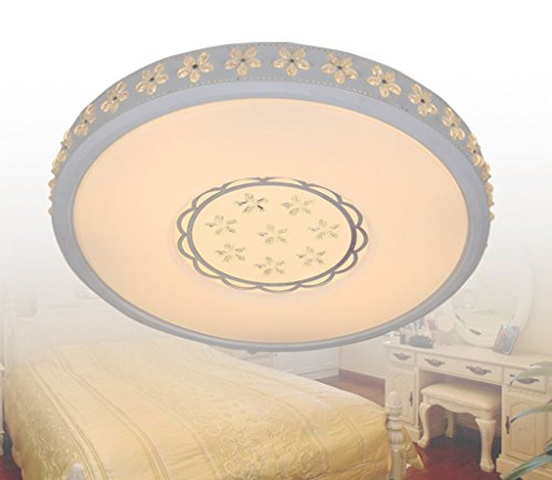 GBYZHMH Deckenleuchte $ LED Deckenleuchte Acryl versprechen Dimmen runde Deckenleuchte Einfache Bauhinia schmiedeeisernen Lampen-LED Startseite Lampen (Farbe: 52 CM 30 w)