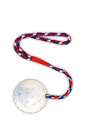 Ball am Seil Wurfball Schleuderball Hundespielzeug Bringsel Wurfspielzeug Apportierspielzeug Zerrspielzeug für Hunde Hundeball mit Wurfschlaufe Spielball Spielseil Spielzeug