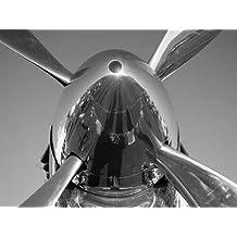 feelingathome-Impresi—n-artistica-Spinner-sur-un-P-51-Mustang-cm87x116-poster-lamina-para-cuadros