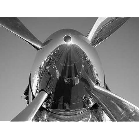 Spinner su del P-51 Mustang da zucchero,