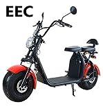 Citycoco Elektro Scooter 1000 Watt 60 Volt 12AH rot mit Strassenzulassung