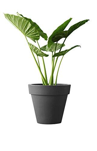 elho pure Round 60 Blumentopf - Rundes Pflanzengefäß in Anthrazit - Moderne Dekoration für Indoor & Outdoor - Ø 59,1 x H 53,6 cm