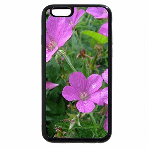 iPhone 6S / iPhone 6 Case (Black) Cranes-bill