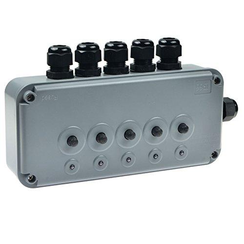 NineLeaf 1 Packungung remote 5fach Schaltkasten IP66 ip665g Schaltbox wetterfesten Außenbeleuchtung Teichen etc. ip5g Fernbedienung gesteuert wasserdicht -