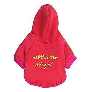 Solike Vetement Chien/Chat Manteau Sweat-Shirt À Capuche Hiver Pull Hiver Sweater Chaud Chiot Petit Chien Imprimé Angel Vetement De Animal Compagnie Chihuahua