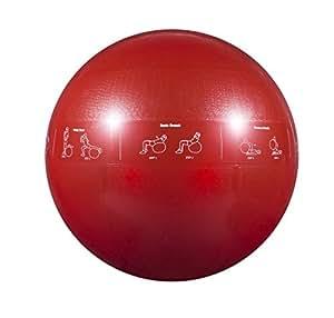 GoFit Ballon de stabilité professionnel - Bleu, 55 cm