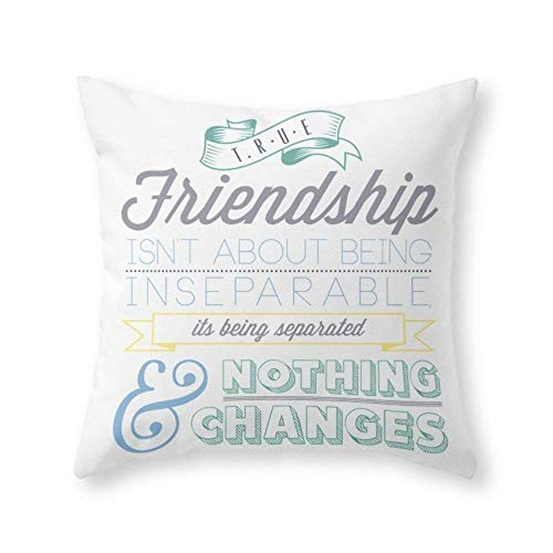 ZiJface True Friendship Throw Pillow Pillow caseCover with Pillow case 18