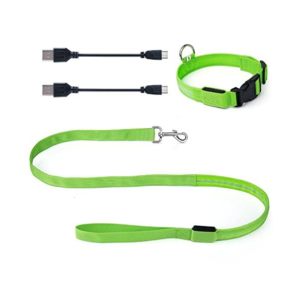 ZeWoo USB Rechargeable LED Dog Safety Collar + LED Dog Lead/Leash - Great Visibility & Improved Safety 6