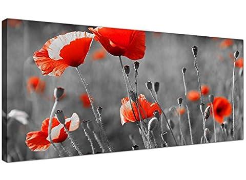 Groß, Schwarz/Weiß, auf Leinwand, Motiv Rote Mohnblumen, günstige Bilder auf