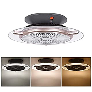 Ceiling-Fan with Lights and Remote-Control, Modern Ceiling Lights Dimmable 48W, Fan Lighting for Living Room, Bedroom