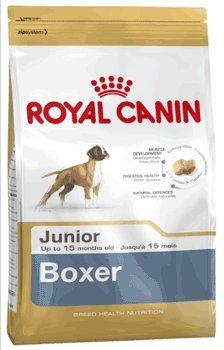 Royal Canin Boxer Junior 12 kg, 1er Pack (1 x 12 kg)