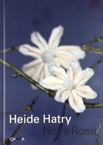 Heide Hatry. Not a rose. Ediz. illustrata por Giovanni Aloi