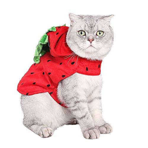 WEATLY Perros y Gatos de la Fiesta de Disfraces...
