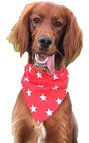 Dog Bandana - Red with White Star Print Dog Bandana