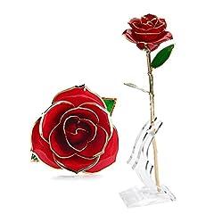 Idea Regalo - Rosa Regalo Fiore, U-KISS oro 24k Rosa in confezione regalo con Clear Display Stand per amante Madre Girlfrien, miglior regalo per San Valentino, la festa della mamma, anniversario, regalo di compleanno (Rosso)