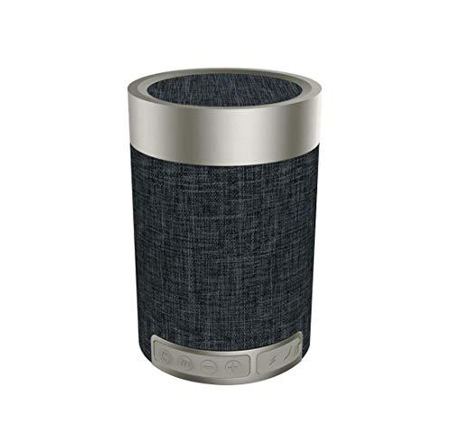 SANRENXING Enceinte Bluetooth Portable,Haut-Parleur Bluetooth sans Fil, Extérieur, Enceinte stéréo avec Audio HD et Basses Amélioré, Intégré Double Pilote Haut-Parleur, Mains Libres Téléphone et TF