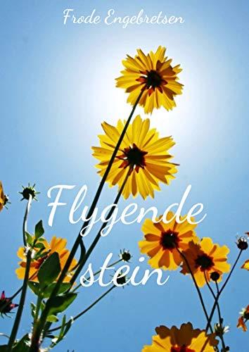 Flygende stein (Norwegian Edition) por Frode  Engebretsen